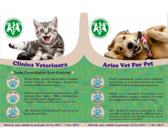 Clinica Veterinara Crangasi Aries Vet For Pet