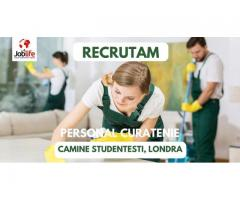 AGENTI CURATENIE - CAMINE STUDENTESTI  CONTRACT SEZONIER, LONDRA